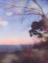Sunset Lover♡夕日...